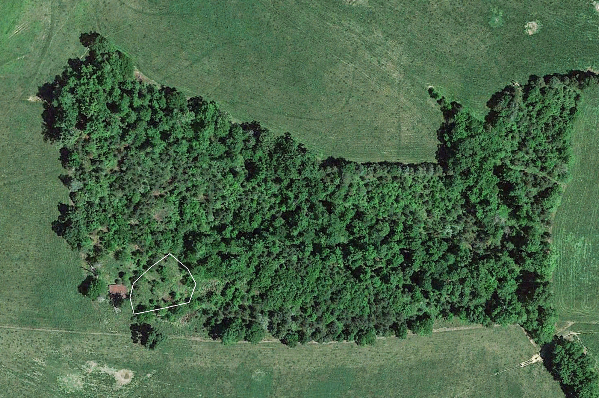 Google earth can help you find a new food plot location