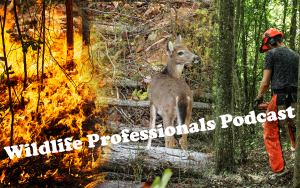 Wildlife Professionals
